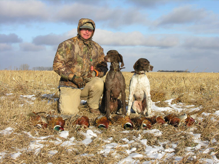 Archived Pheasant Hunting Forum | - VC Redstag's ...